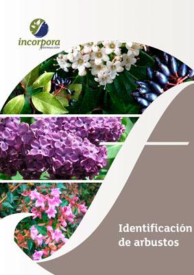 Identificación de arbustos