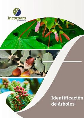 Identificación de árboles